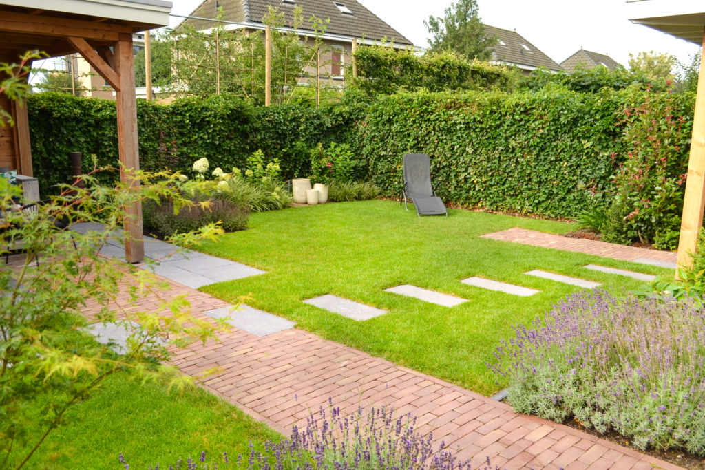 Planten en bomen in de tuin interieur inrichting