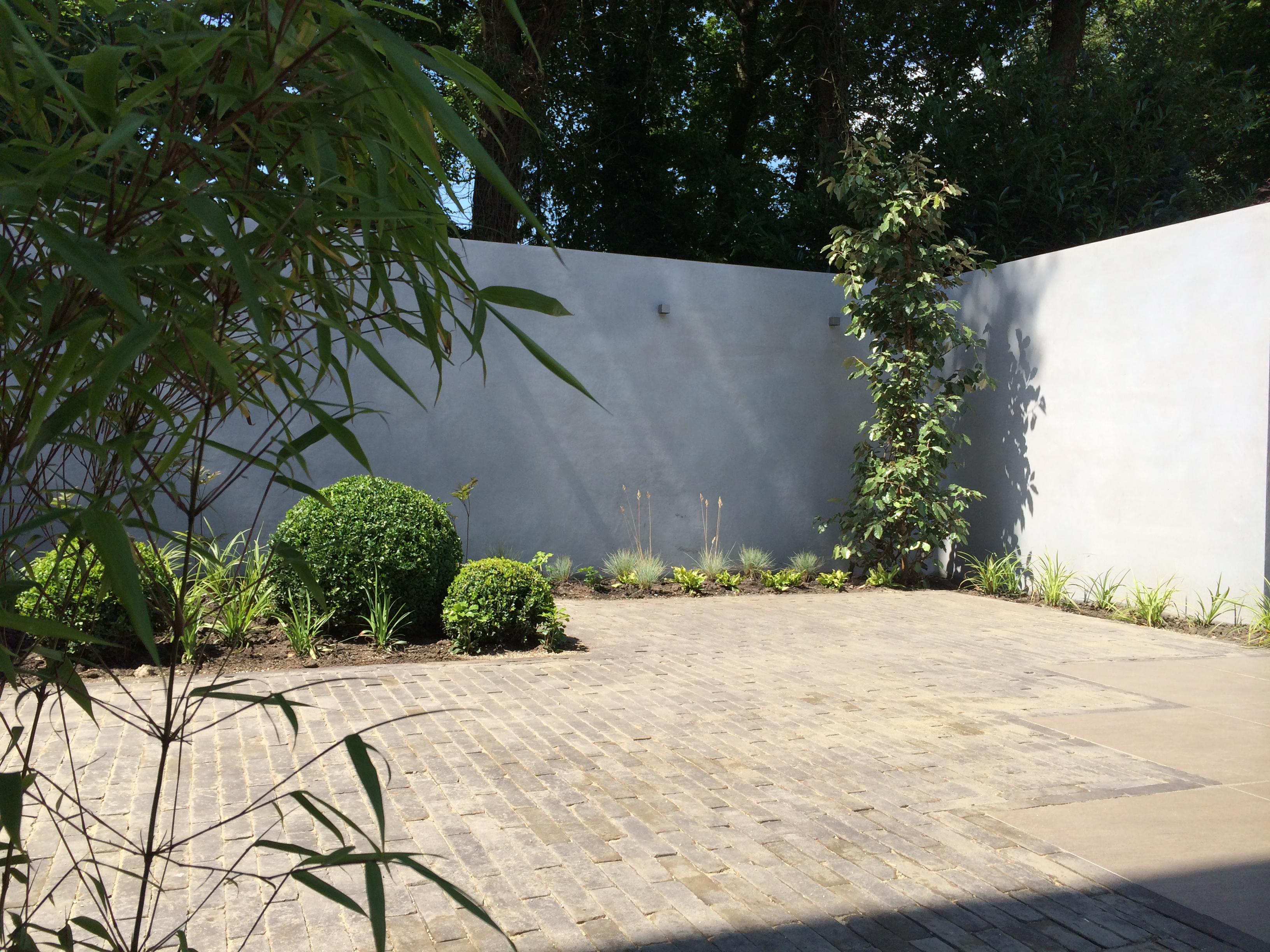 Creatieve ideeën voor tuindecoratie aan de muur