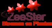 zeester logo small 171x94 2