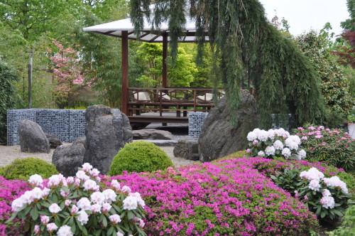 Appeltern garden in Summer.1