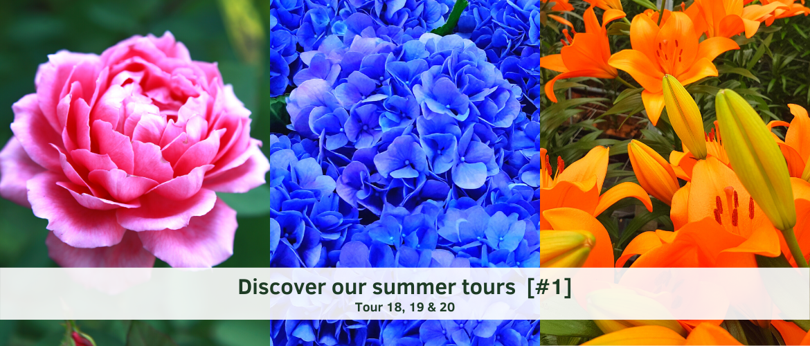 Discover our Summer Tours