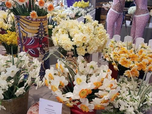 Daffodils arrangements