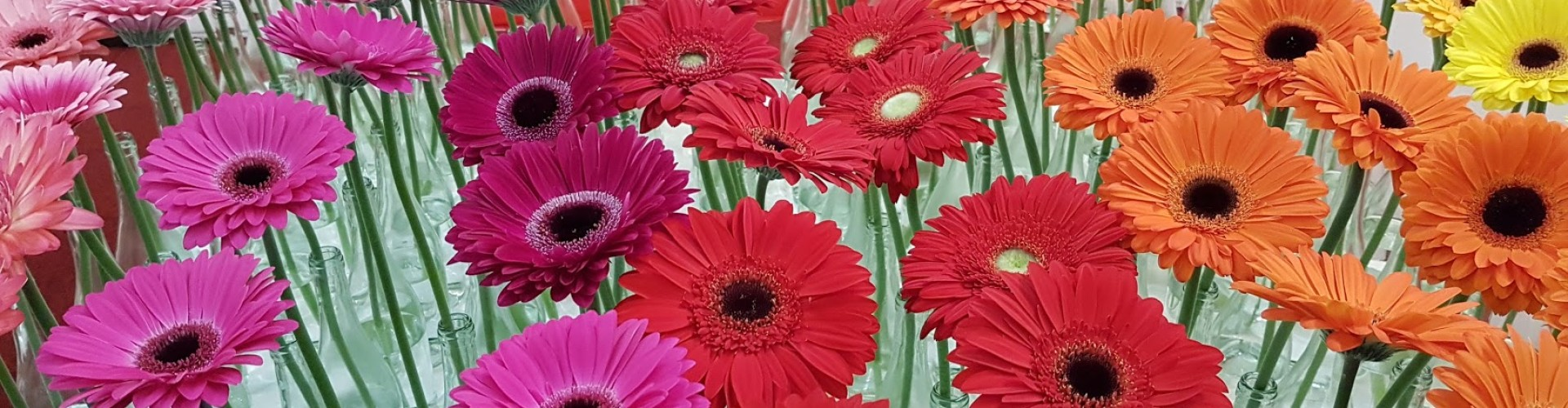 Gerbera's flower arrangement at Trade Fair exhibition