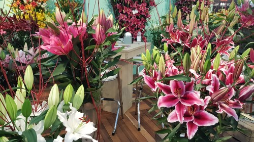 flower-arrangements-at-IFTF-show