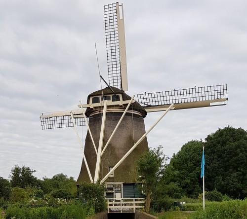 riekermolen-next-to-rembrandts-statue