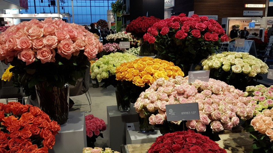 IFTF and Trade Fair flower exhibitions Tours