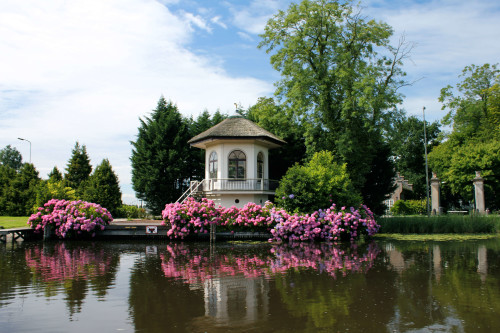 vecht-river-tea-house-surrounded-by-hydrangeas-