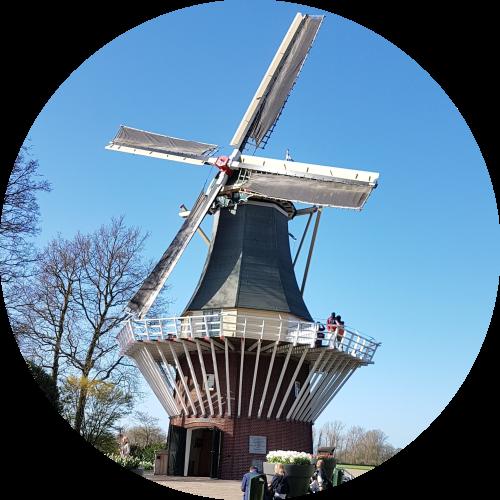 windmill-at-keukenhof