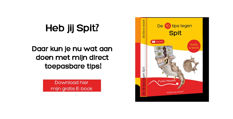 E-book Spit hier downloaden