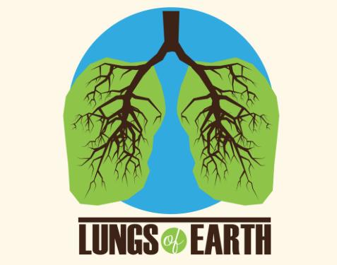 De longen van de aarde: plant een boom