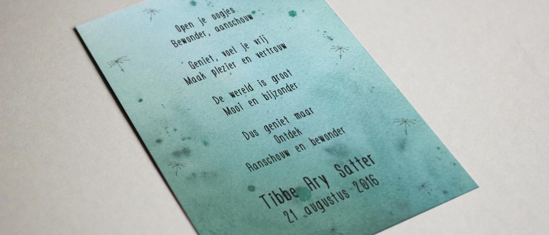 Geboortekaartje Tibbe Ary Satter
