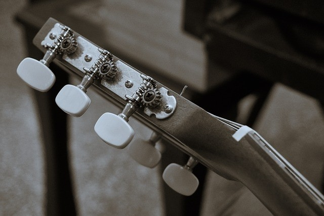Stemschroef gitaar