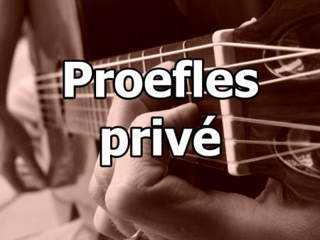 Online privé gitaarles proefles