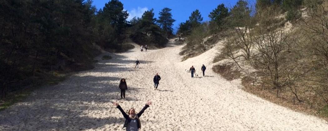 Zes redenen waarom je een ideale yoga retreat in Nederland kunt ervaren