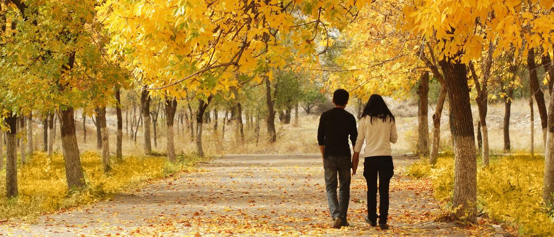 Ik ga wandelen en ik neem mee …