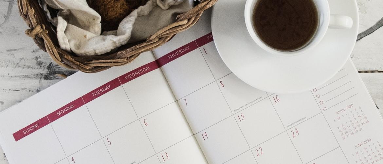 In the spotlight: Kalenders