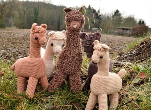 alpaca haakpatroon
