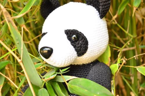 panda haken
