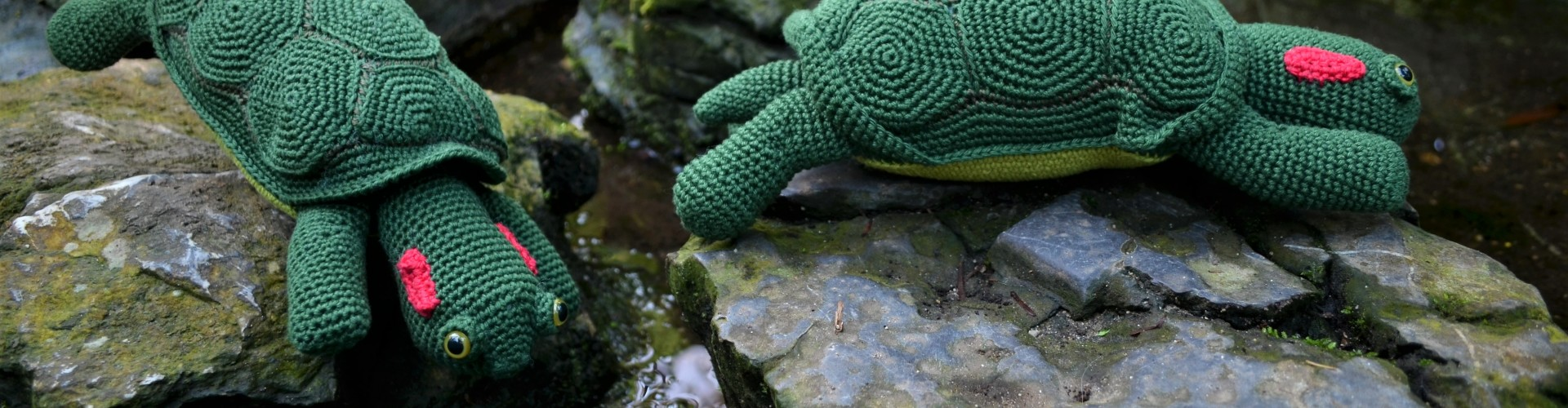 haakpatroon roodwangschildpad