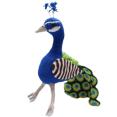 haakpatroon pauw
