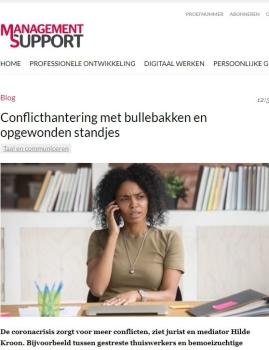 Management Support Artikel over Opgewonden Standjes en Bevredigende Oplossingen