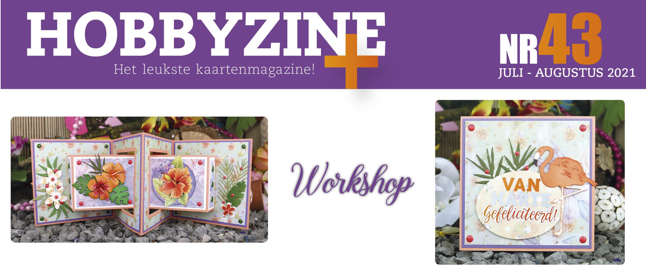 Workshop in Hobbyzine 43
