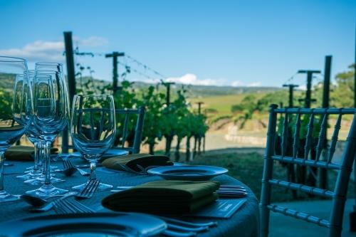 wijn- en culinaire reizen