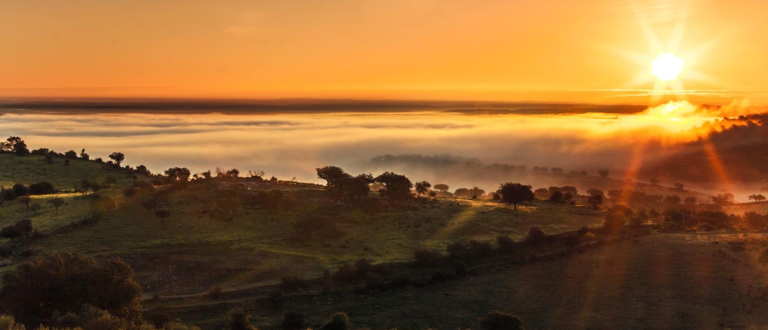 Beleef de Alentejo in midden Portugal