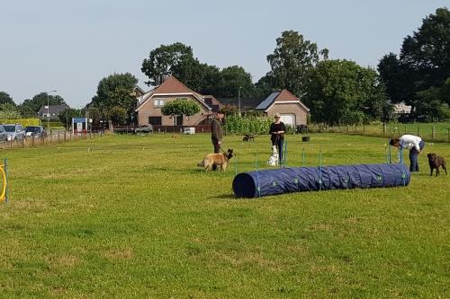 Hondenschool ABCT Nieuwe cursus