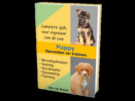 Puppy opvoeden en trainen