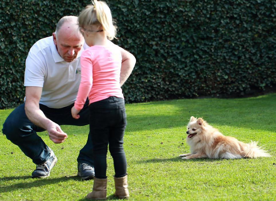 Begeleiden puppy