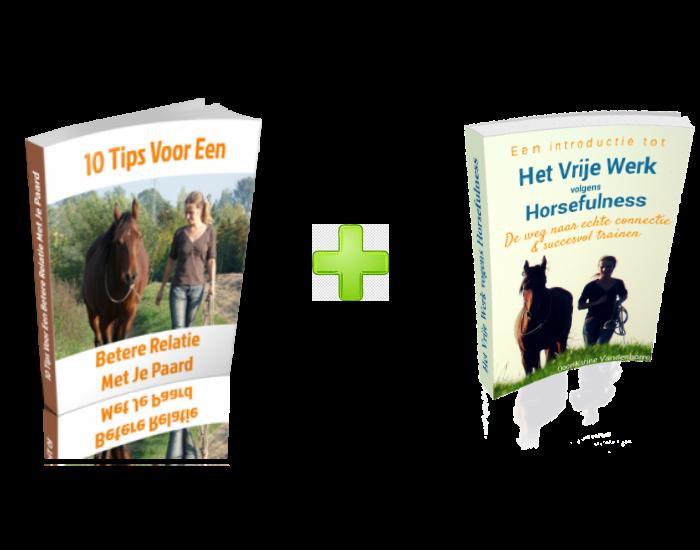 gratis e-books werken in vrijheid met paarden en connectie