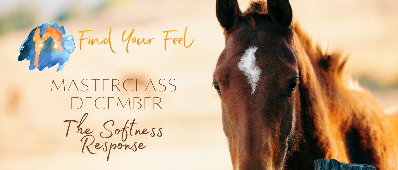 Find Your Feel Masterclass van December: The Softness Response