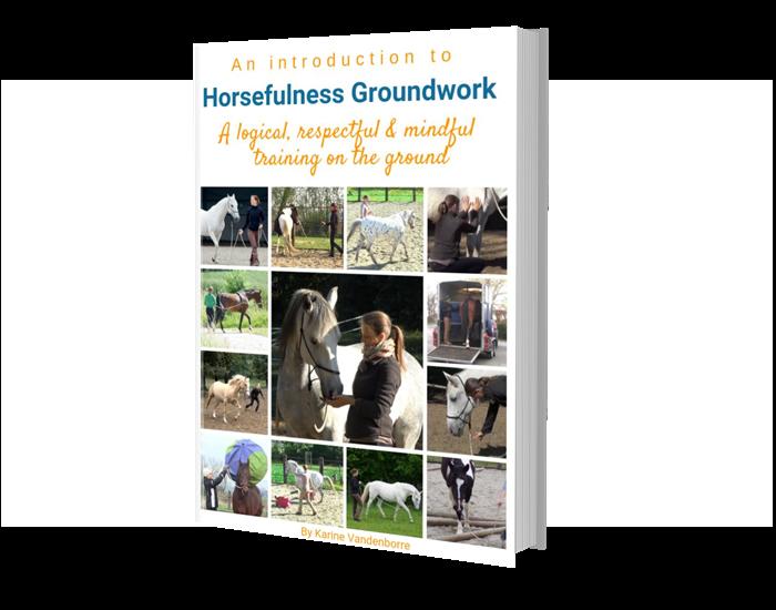 grondwerk met paarden volgens horsefulness training