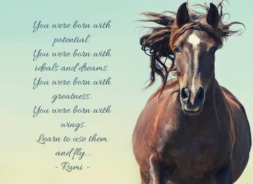 horsemanship potential