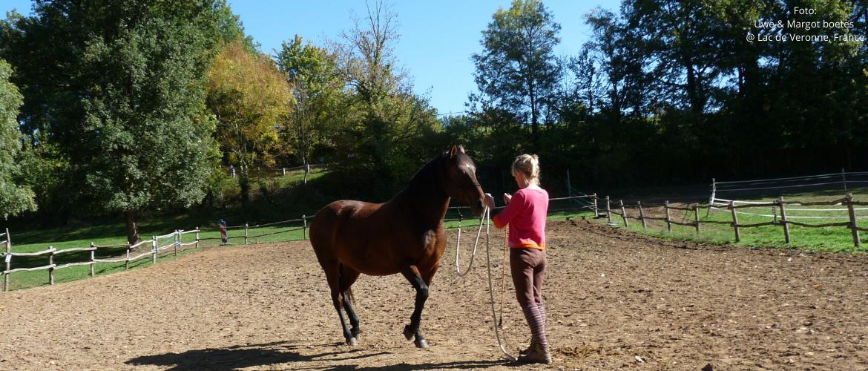 Vinden paarden het eigenlijk wel leuk om grondwerk te doen?