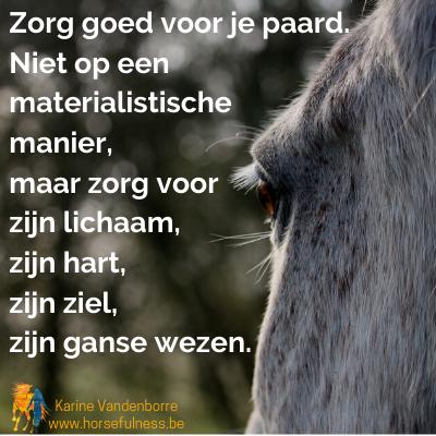 zorg-goed-voor-je-paard