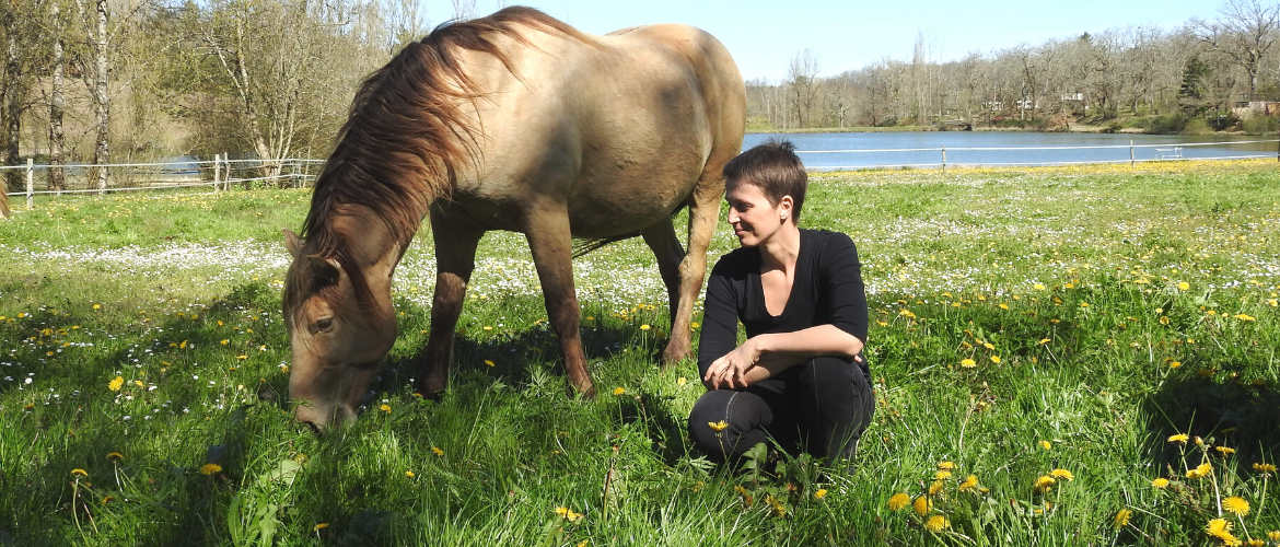 """60 things you can do while doing """"Bonding Time"""" with your horse."""