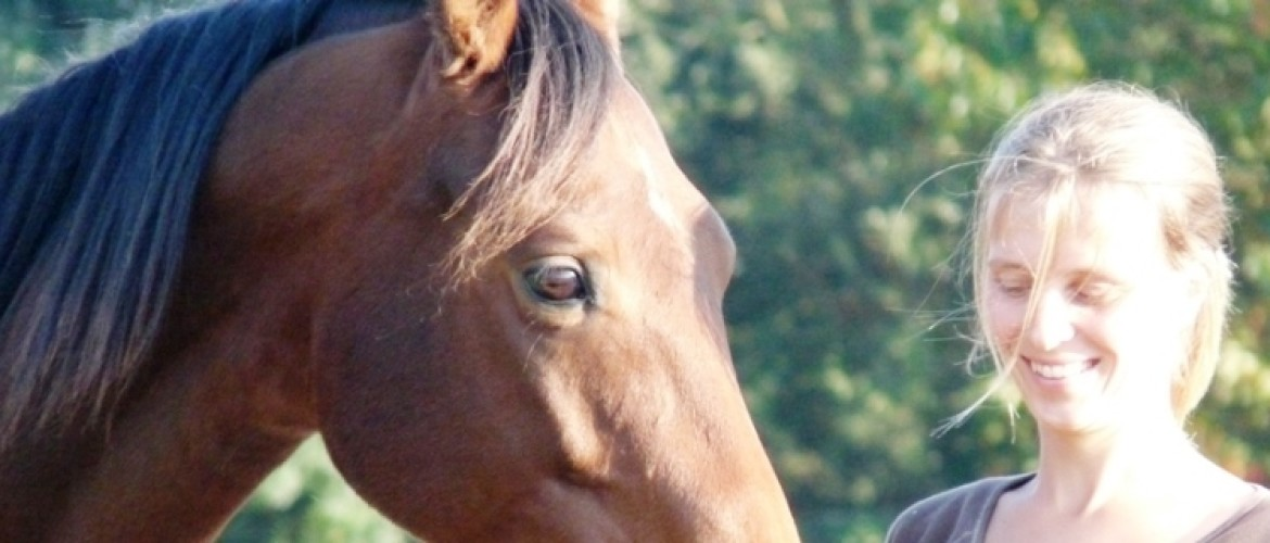 10 tips for a positive mindset when training your horse