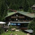 ifa alpenhof wildental