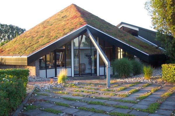 Rtl 4 tuinman lodewijk hoekstra over groene daken en for Foto op hout maken eigen huis en tuin