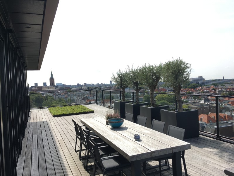 aanleg dakterras omgeving Rotterdam