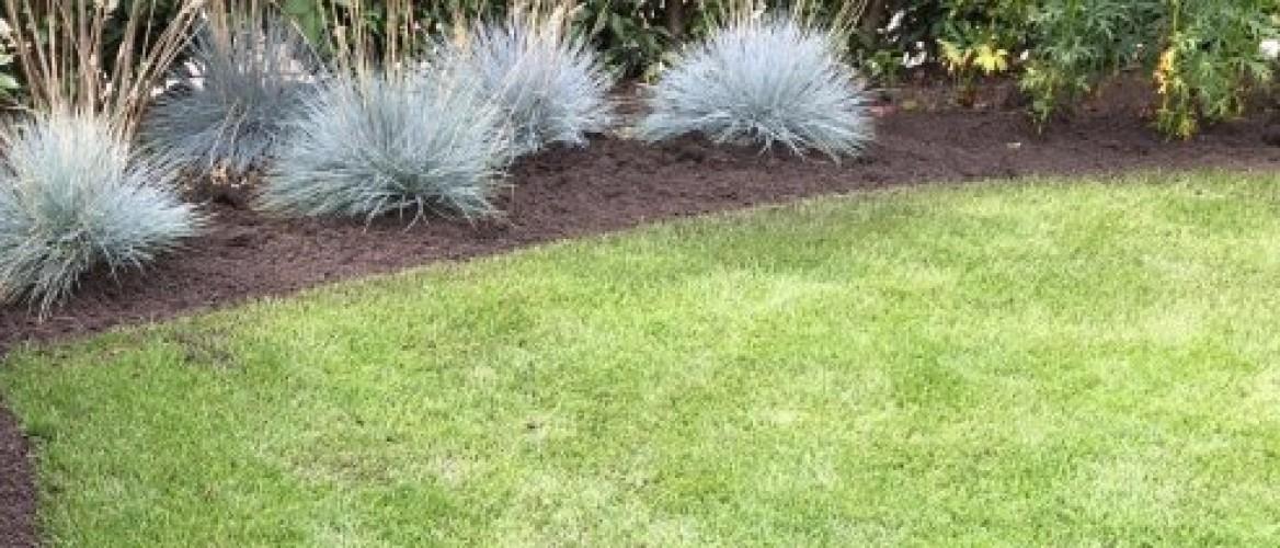 Graskanten bijwerken