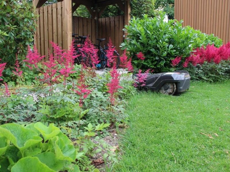 onderhoud grote tuin