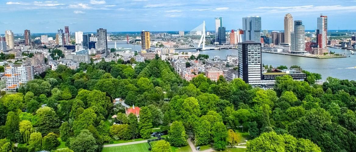 Vergroenen tuin in Rotterdam