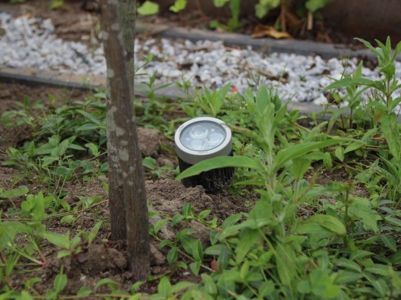 tuinverlichting kleine tuin