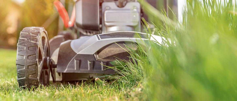 Gazon en gras maaien: waar moet u op letten?