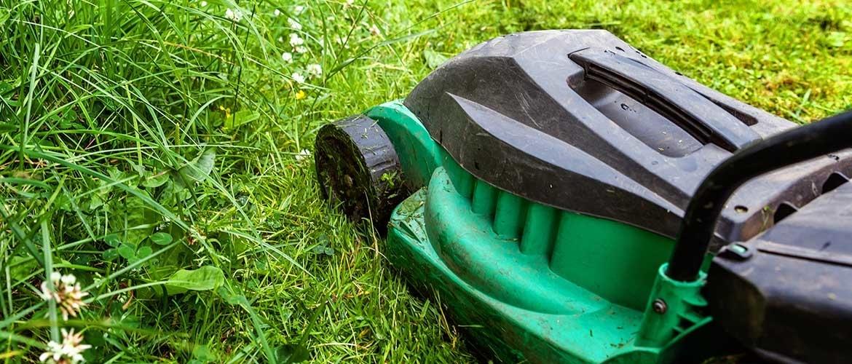 Het gras maaien na een regenbui: is dat aan te raden?