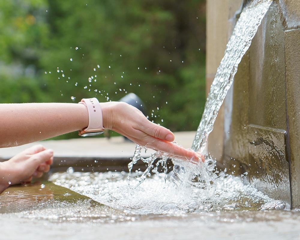 waterornament onderhouden
