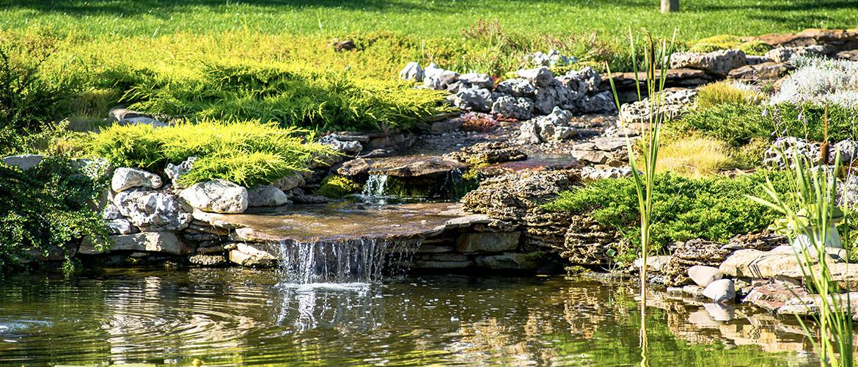 Hoe houd je de waterhardheid van je vijver op peil?